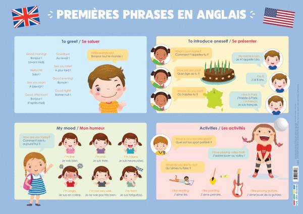 Les Posters de l'école - Premières phrases en anglais